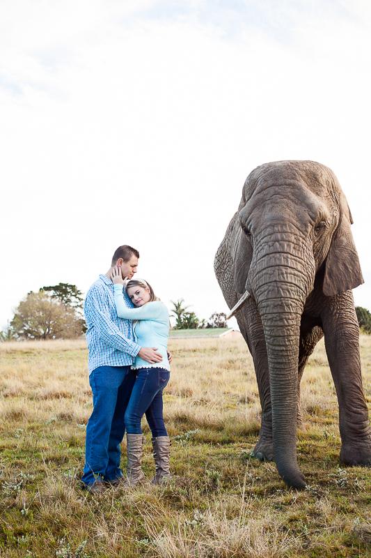 Elmar & Colleen Anniversary Shoot Knysna Elephant Park-39