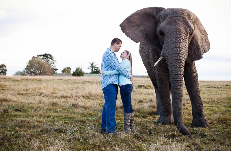 Elmar & Colleen Anniversary Shoot Knysna Elephant Park-42