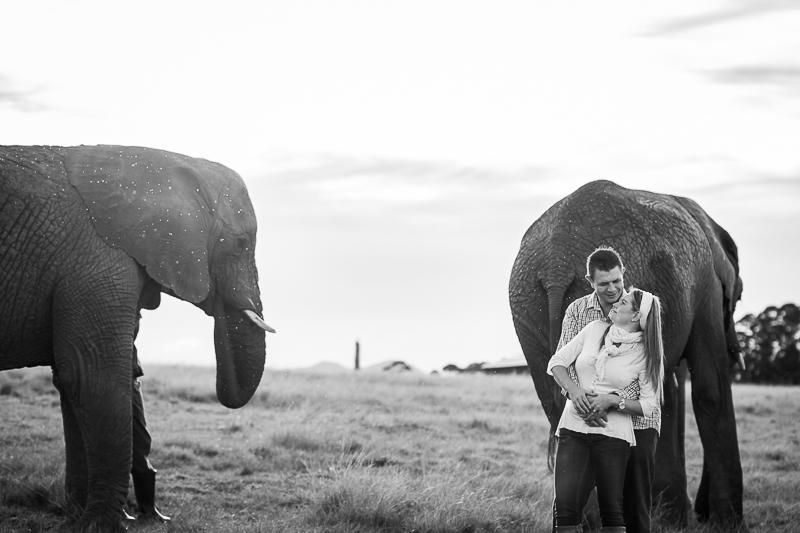 Elmar & Colleen Anniversary Shoot Knysna Elephant Park-49