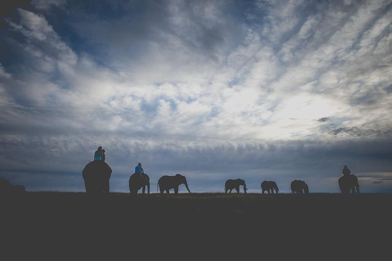 Elmar & Colleen Anniversary Shoot Knysna Elephant Park-8